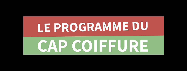 le programme du CAP Métier de la Coiffure